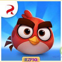 دانلود بازی Angry Birds Journey – بازی سفر پرندگان خشمگین اندروید