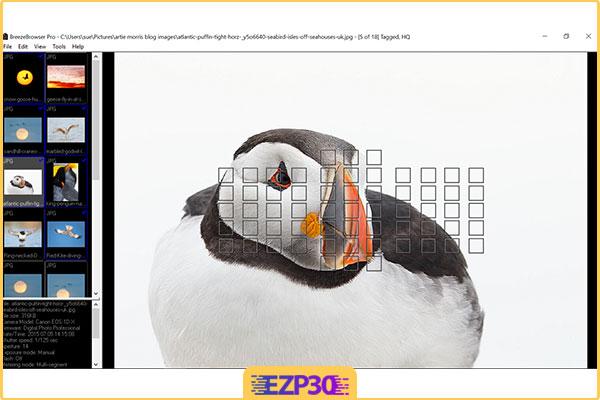 دانلود نرم افزار Breeze Browser pro